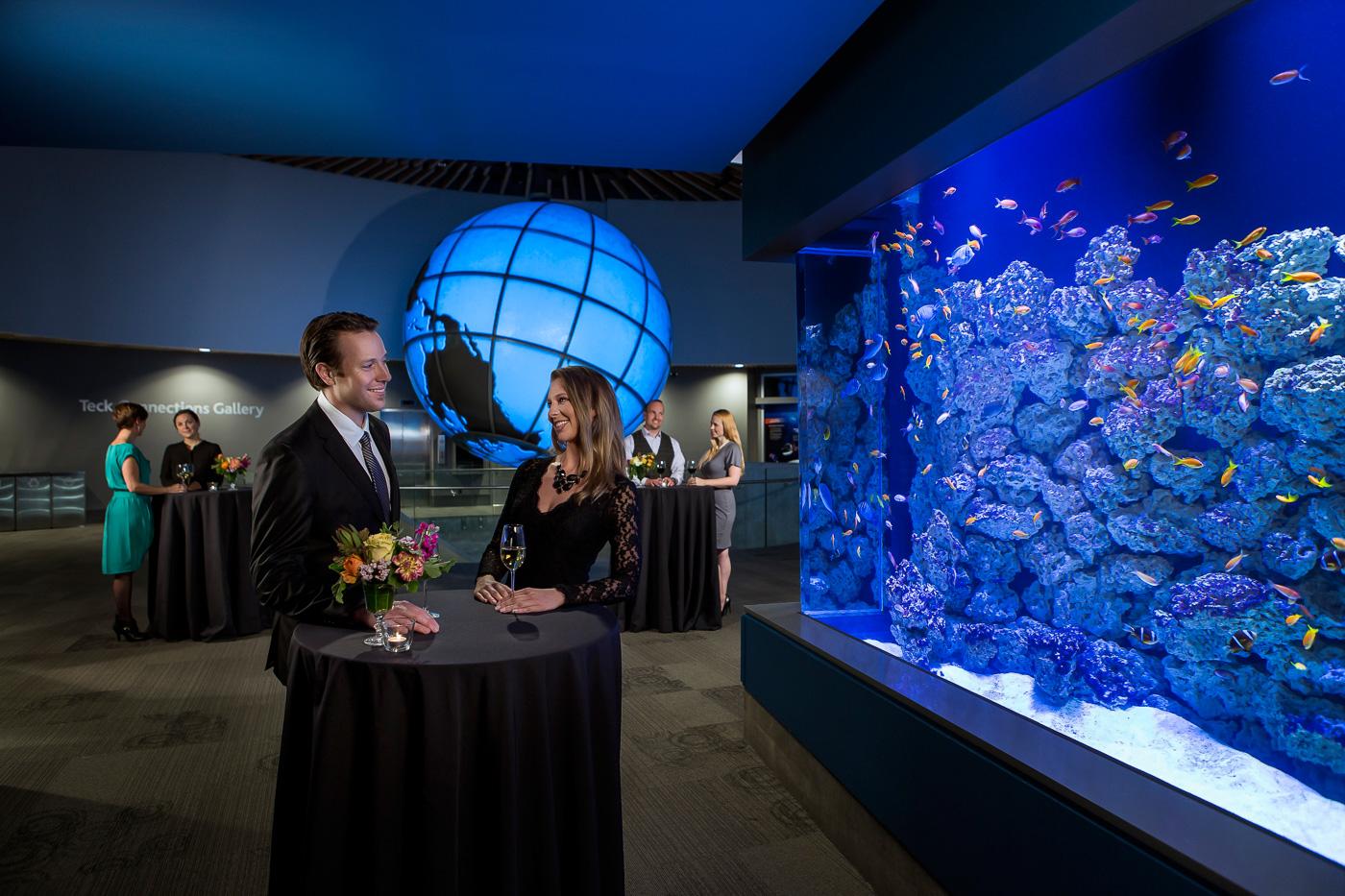 The Vancouver Aquarium - Behind the scenes